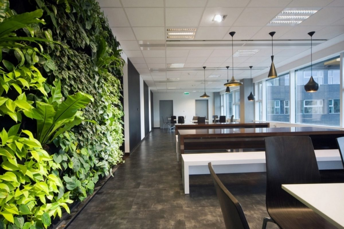 Spanish companies incorporate biophilic design in their environments to increase their workers' welfare and productivity