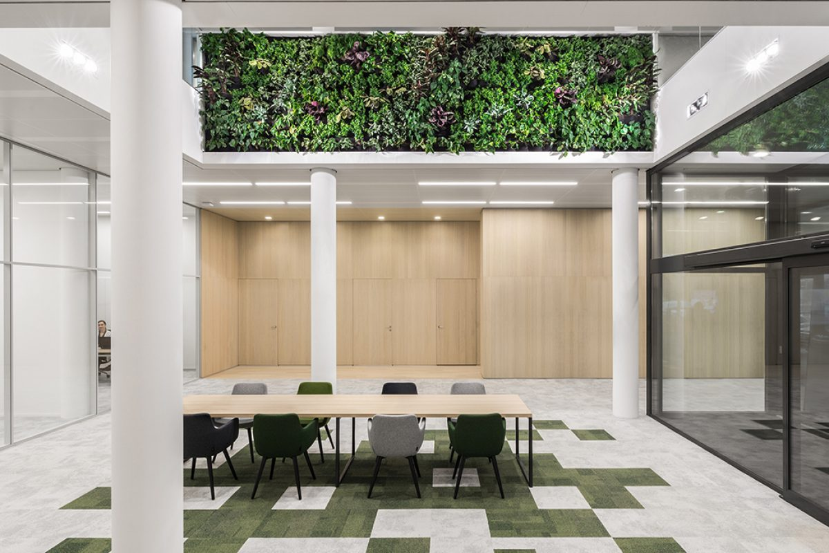 i29 interior architects designed an open and green offices, creating an environment for «growth»