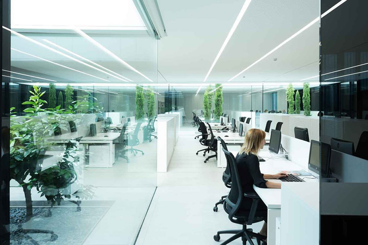 "Ramón Esteve designed the new Ubesol facilities following the premises of the new ""work culture"""