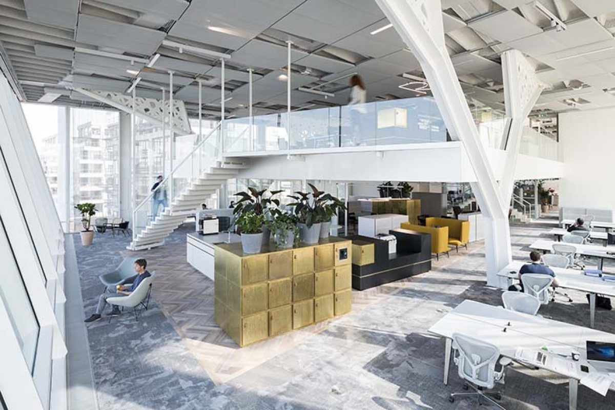 Firm Architects designed the offices of Amvest in Amsterdam. One of the best work spaces in the world
